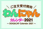 犬,猫,カレンダー,2021,わんにゃんカレンダー,トリミングサロン,ペットショップ,動物病院,ペット事業部トライアングル
